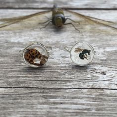 Deaths Portal Stacking Ring with REAL BEE & LADYBUG set in resin and sterling silver -ImKowai- Death Love Magic Occultist Organic Jewelry by ImKOWAI on Etsy https://www.etsy.com/listing/251500419/deaths-portal-stacking-ring-with-real