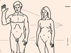 Ci stiamo ancora evolvendo? La cultura ha cambiato radicalmente l'esistenza umana. Alcuni affermano che non solo abbia cambiato l'esistenza umana, ma la stessa evoluzione.  Siamo forse usciti dal meccanismo di selezione naturale? Alcune (possibili) risposte su human-natures.net!