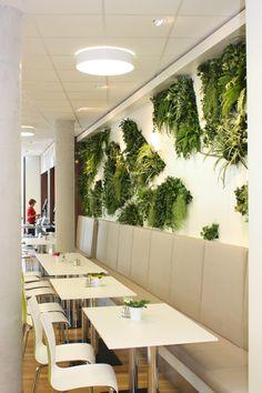 Vertikales Grün bietet unendliche Gestaltungsmöglichkeiten-und verleiht jeder Räumlichkeit eine erfrischende Atmosphäre. www.kremkau.de