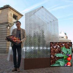 {Lego Greenhouse}  Not only is greenhouse built from clear Legos, it uses Lego bricks as growing medium.  Love it.
