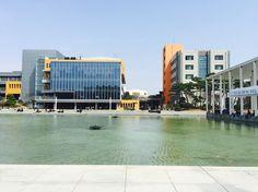 화창한 날의 한양대 애리카 캠퍼스 호수공원. 광합성 하기에 딱이에요!!!! Sunny day, one of my favorite place in hanyang univ. erica campus