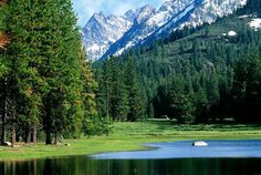 Living in the wilderness would be scary, but I am adventurous and I want to try to live in the wild for a couple days.
