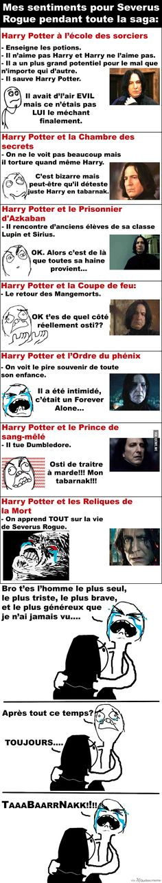 Mes sentiments pour Severus Rogue Plus Harry Potter Jk Rowling, Harry Potter Film, Rogue Harry Potter, Harry Potter Universal, Harry Potter World, Severus Snape, Severus Rogue, Hermione, Jarry Potter