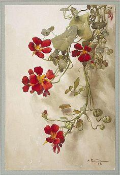A. Renaudin- Nasturiums, 1893