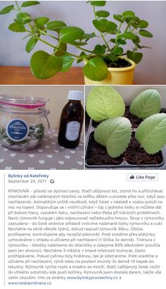 Rymovnik Garden Architecture, Flora, Plants, Syrup, Planters, Plant
