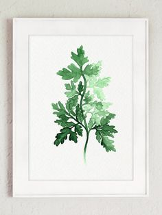 Set of 3 Herbs Watercolor Painting Food Art by ColorWatercolor