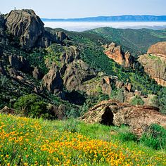 """Part of the """"wow"""" moment of rolling up at Pinnacles National Park, about two hours south of San Francisco, is the unexpected contrast. One minute you're on a grassy country road, then suddenly: a shambling sky-high rock castle."""