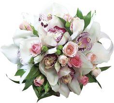 Výsledky obrázků Google pro http://www.flowerblues.ru/static/pics/flowers/0015.jpg