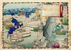 大日本物産図会 土佐 鰹節を製ス図 | 錦絵アーカイブス | アーカイブス | 味の素食の文化センター