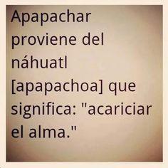Apapachar