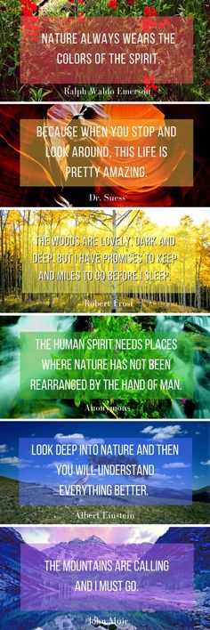 I was looking through John's amazing collection of photographs and am in awe of the stunning colors that nature provides. I thought I'd share, along with some of my favorite nature quotes. All of these photos are from Colorado, except the second photo which is from Antelope Canyon.