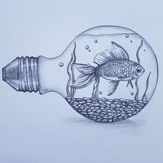 Drawing nature animals artists new ideas Disney Pencil Drawings, Pencil Drawings Of Nature, Fish Drawings, Cool Art Drawings, Nature Drawing, Art Drawings Sketches, Animal Drawings, Art Sketches, Art Nature