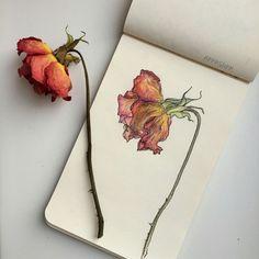 Imagen de art, flowers, and drawing