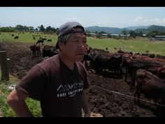 New video is up! :Voices from fukushima farmers.