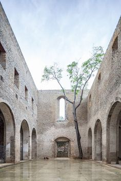 Santa Maria dello Spasimo, Palermo, Italia (photo: © ANDREAS BUSCHMANN, PROFESSUR SIK)