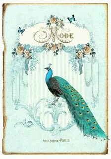 Frame and peacock