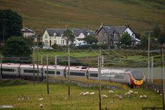Travel Scotland's West Coast by rail. Great British, Scotland Travel, West Coast, Bucket, Image, Buckets, Aquarius