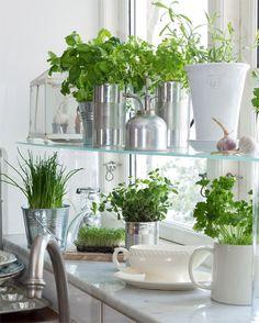 Apartment garden (SWE)