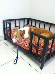 Use that old brown wood cradle for a dog bed for Milo! Wonderful idea