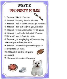 Westie Dog Property Rules Magnet VERY FUNNY. $4.79, via Etsy.
