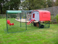 Eglu from Omlet modern chicken coop, for when I have fancy chickens Fancy Chickens, Pet Chickens, Raising Chickens, Small Chicken Coops, Chicken Coop Designs, Chicken Pen, Building A Chicken Coop, Hen House, Urban Farming