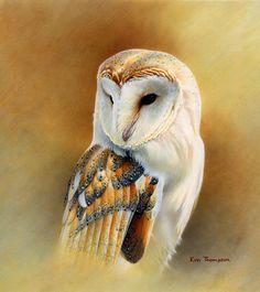 BARN OWL.jpg (JPEG Image, 1200×1348 pixels)