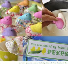 Peeps dipped in chocolate, did these and they didn't turn out as pretty.  I think my mistake was using sugar powder icing instead of melted white chocolate.