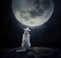 Image result for moon artwork