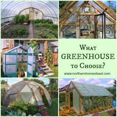 What greenhouse to choose?