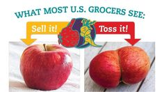 """Petition · #WhatTheFork? · Change.org- Many low income American families simply can't afford fresh fruits and vegetables. Yet, we throw away nearly 26% of all produce before it even reaches the grocery store due mostly to cosmetic standards from large grocers that dictate exactly how fruits and veggies should look. If produce fails to make the grade for size, shape, or color, retailers deem it """"ugly"""" and refuse to sell it in their stores. Billions of pounds of good, healthy produce goes…"""
