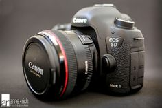 new camera :: canon 5d mk3