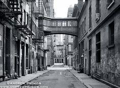 Staple Street, Tribeca