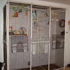 Bird cage out of PVC- Free plans and pictures of PVC pipe projects.
