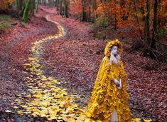 Magically Enchanted Photography
