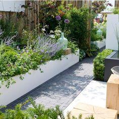 Contemporary Garden The sunny city garden for friends of the South Here it s. Terrace Garden, Garden Spaces, Lawn And Garden, Balcony Gardening, Back Gardens, Small Gardens, Outdoor Gardens, Fairy Gardens, Contemporary Garden Design