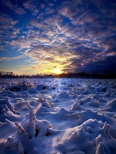 Wisconsin's Winter Wonderland by Phil Koch - Landscapes Weather ( summer. spring, natural light, vertical, wisconsin, photograph, environement, farmland, yellow, leaves, phil koch, spring, photography, sun, love, farm, nature, autumn, horizons, flowers, inspired, clouds, office, pwcwinter, orange, green, twilight, agriculture, horizon, scenic, morning, portrait, field, winter, red, seasons, national geographic, blue, serene, sunset, fall, peace, meadow, sunrise, earth, landscapes, floral…