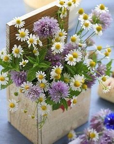 A fresh spring bouquet and fresh white milk.nothing says spring better My Flower, Fresh Flowers, Wild Flowers, Beautiful Flowers, Simple Flowers, Simply Beautiful, Spring Flowers, Beautiful Women, Deco Floral