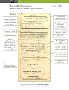 Hunting your german ancestors | Genealogy | Genealogy, Genealogy