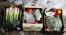 Germany Has An Ambitious Strategy To Halve Food Waste By 2030
