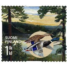 Mallard stamps - mainly images - gallery format Mallard, Postage Stamps, Birds, Ducks, Painting, Euro, Seals, Finland, Animal Themes