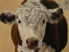 """Hereford Portrait Study by denise rich Oil ~ 7"""" x 9"""""""
