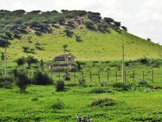 Far north of Al Qadarif أقصي شمال القضارف http://www.panoramio.com/photo/41529107 #sudan #alqadarif
