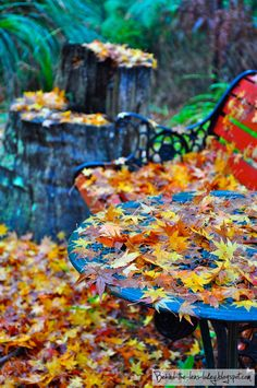 Leafy seat
