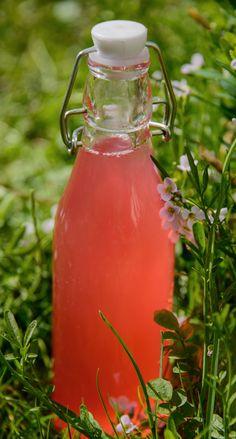 Raparperi-mansikkajuoma maistuu niin lapsille kuin aikuisillekin.1. Kuumenna vesi ja sokeri kiehuvaksi. Lisää paloitellut raparperit ja keitä noin 10 minuuttia.2. Murskaa mansikat ja lisää ne raparper...