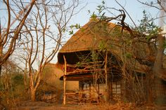 Zambia Safari Experience in South Luangwa African Animals, African Safari, Parks, River Lodge, Cabin, House Styles, Beach, Followers, People