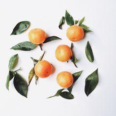 Tangerines | sarahinthegreen | VSCO
