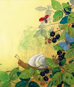 """""""Good morning Mr Snail,"""" said Pelle as he watered his plants. """"Your shell is shiny today."""" -- Illustration from new board book PIPPA AND PELLE by Daniela Drescher."""