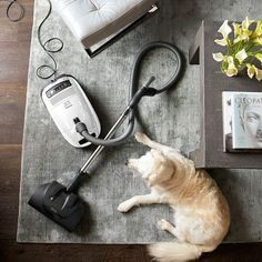 Shop Williams Sonoma for a complete selection of Miele vacuum cleaners, bags and filters. Miele vacuums are powerful, lightweight and easy to maneuver.