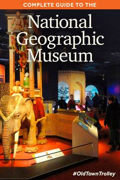 Complete Guide To The National Geographic Museum | Washington, DC
