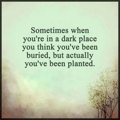 Sometimes when you're in a dark place you think you've been buried, but you've actually been planted.